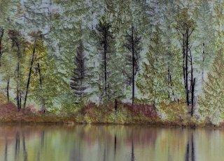 Forest-Tapestry.jpg